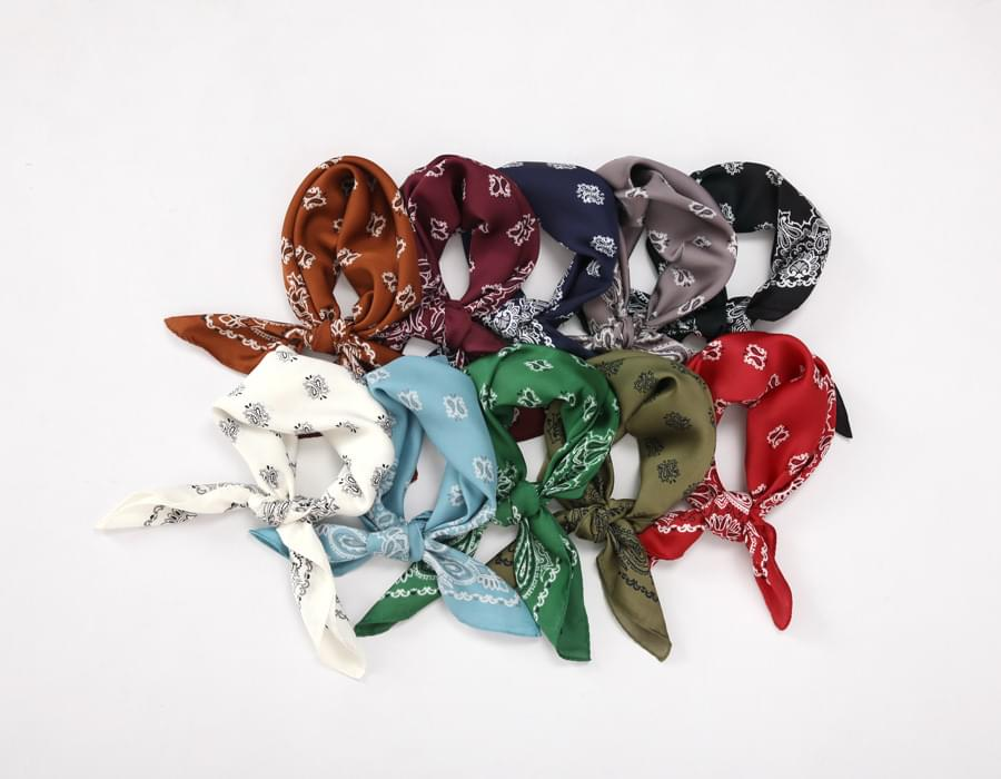 Silket paisley scarf_M (size : one)