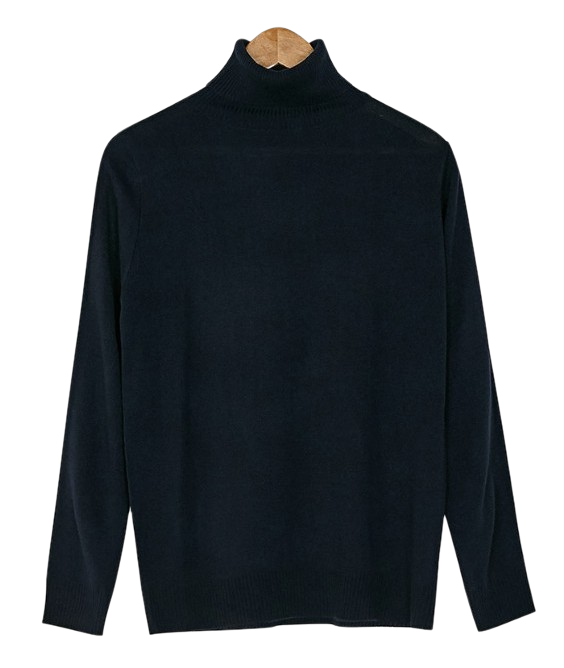 basic turtleneck knit tee