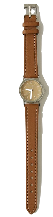 classic brown watch