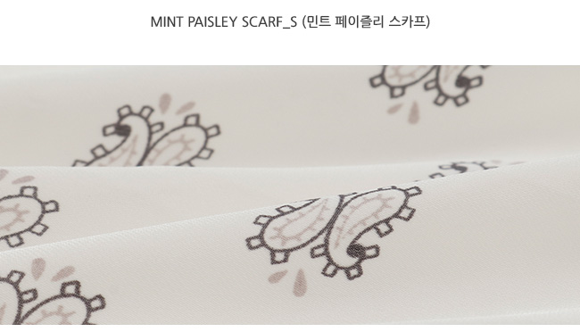 Mint paisley scarf_S (size : one)
