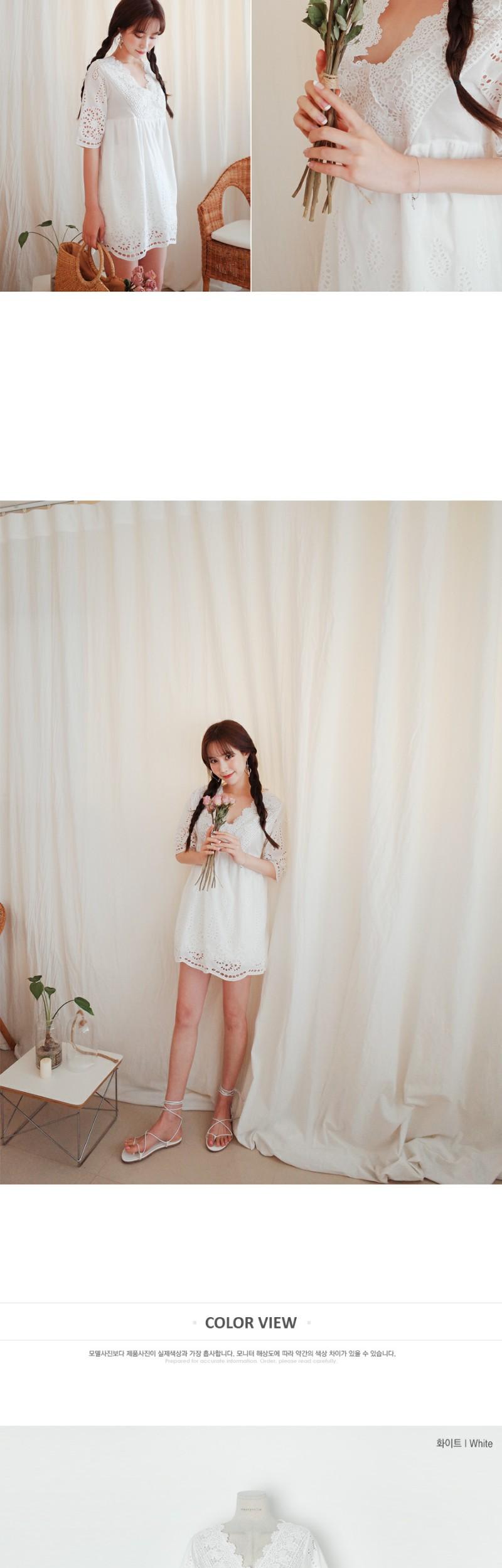 Lace Gully Dress