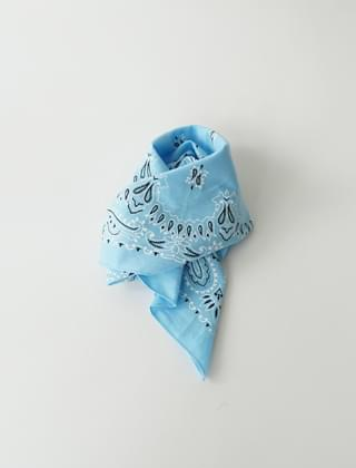 paisley pattern scarf (2colors)