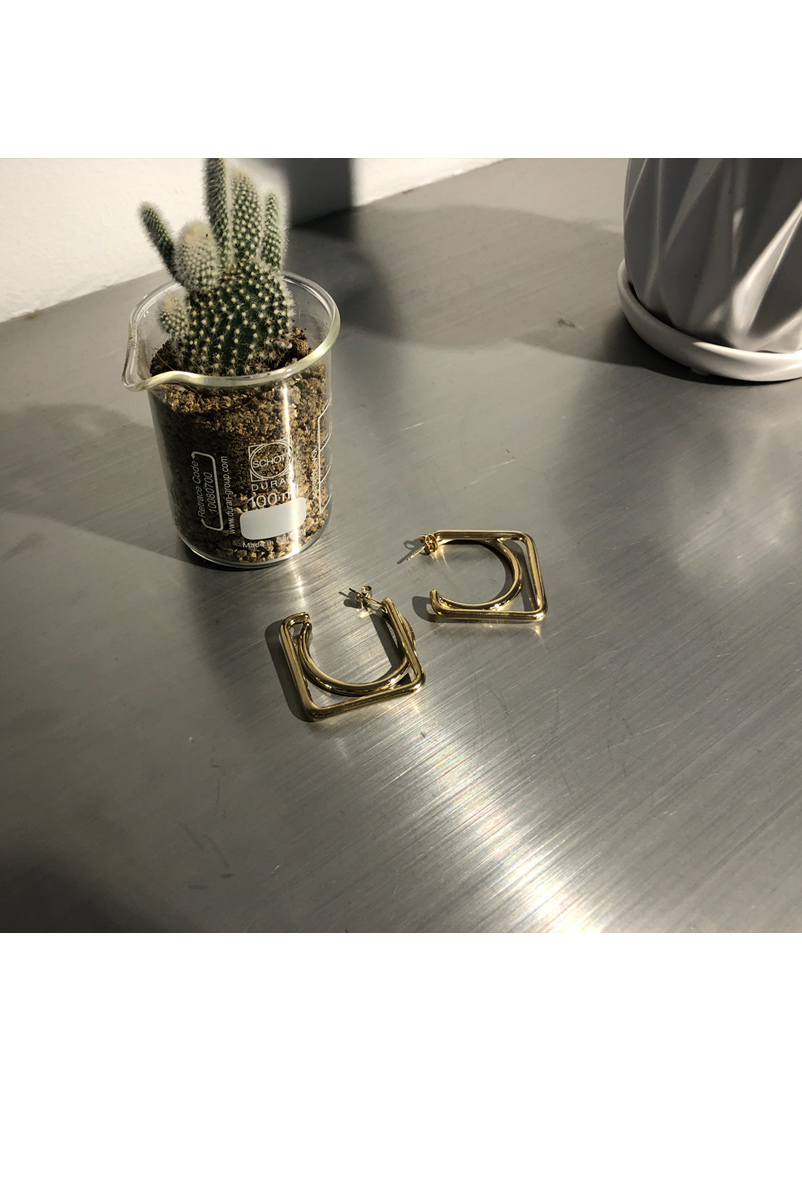 Shaped Gold Earrings