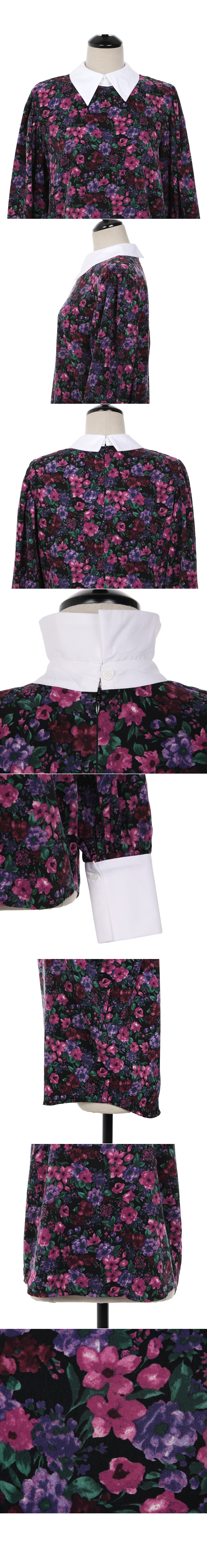 Rosa Flower bl