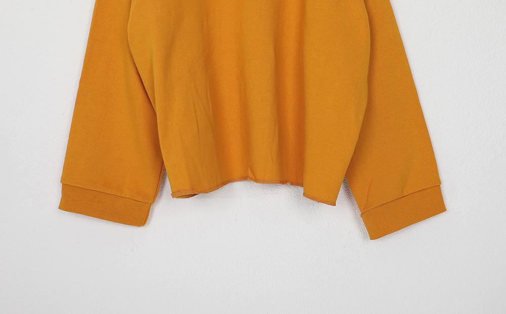 autumn boxy short hood (4colors)