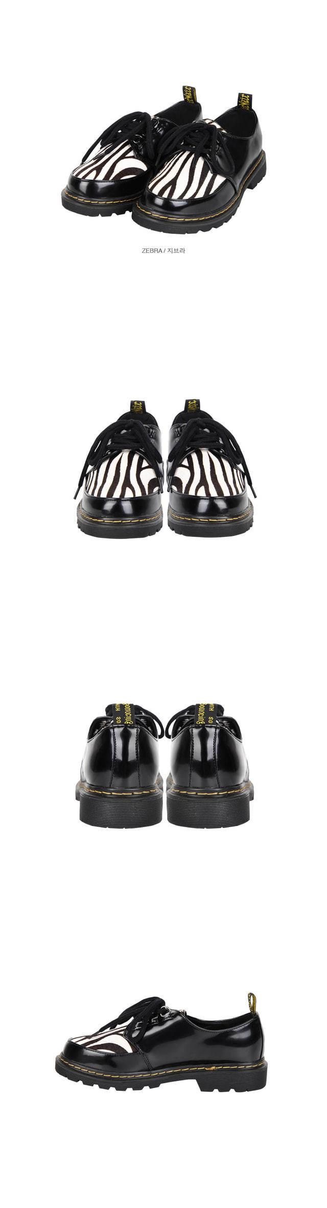zebra creeper