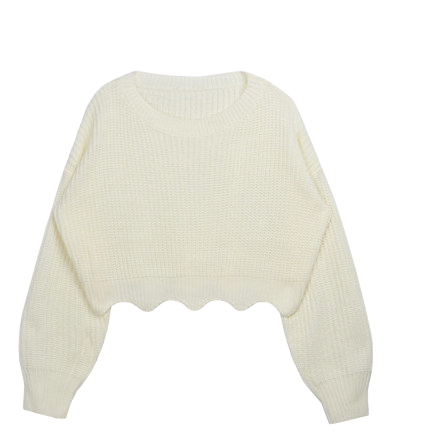 Wish Wave Crop Knit