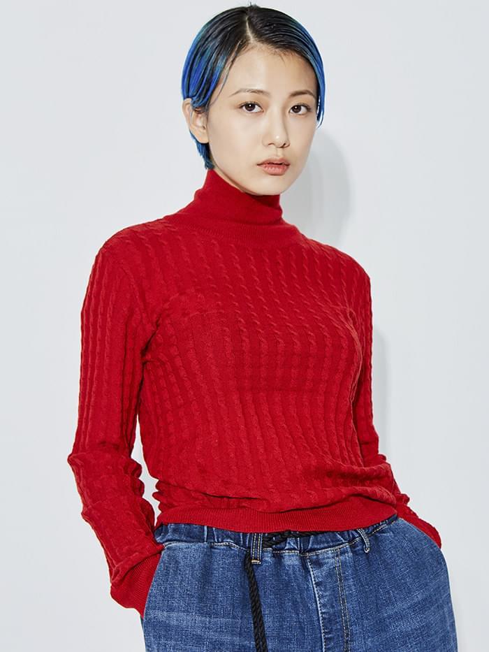pola-neck mini cable knit (5 color)