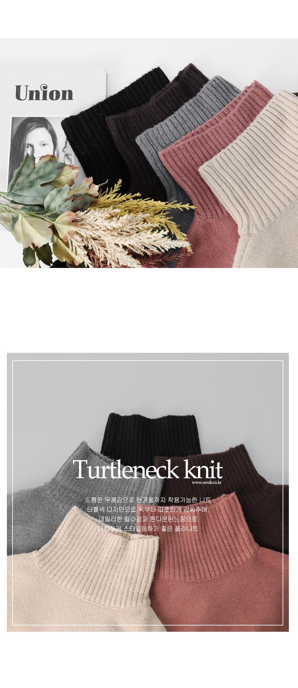 Newer turtleneck knit