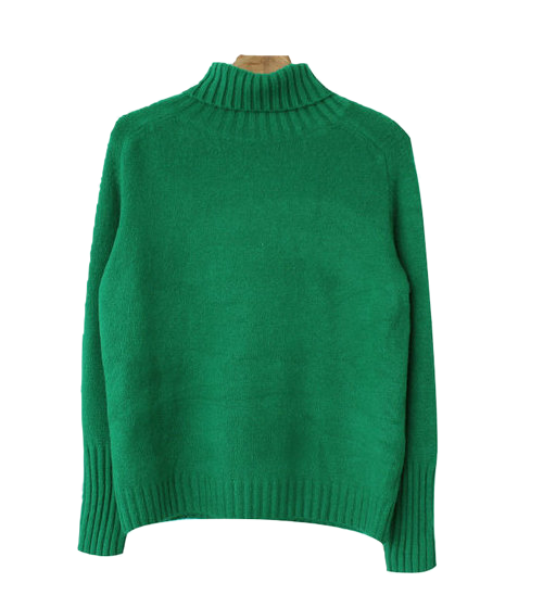 Self-made / Nelson-Fosil Bodle Turtle Knit