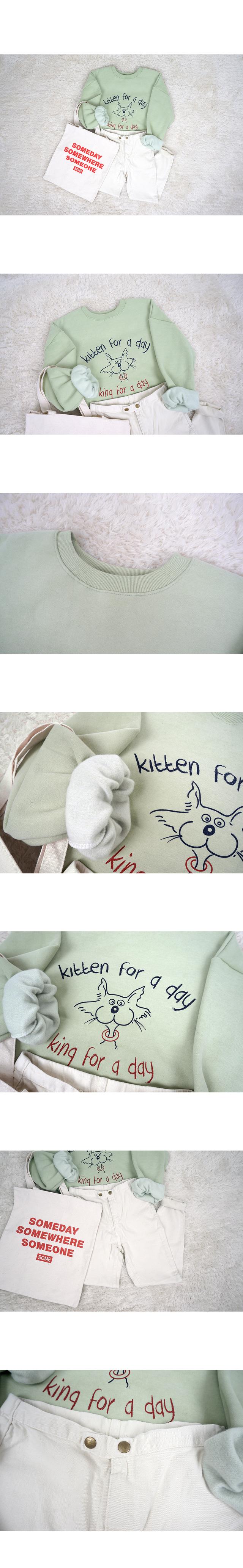 Kitten Day MTM