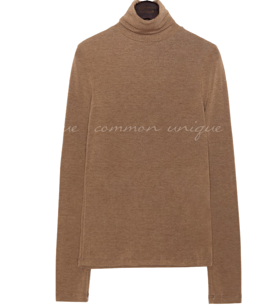 8 COLOR POINT WOOL TURTLE NECK T