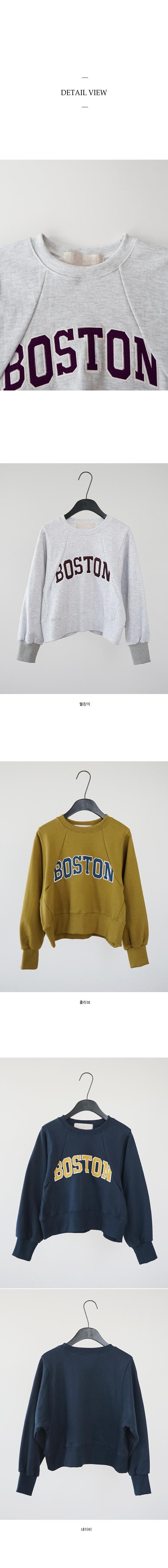 boston crop sweatshirt (3colors)