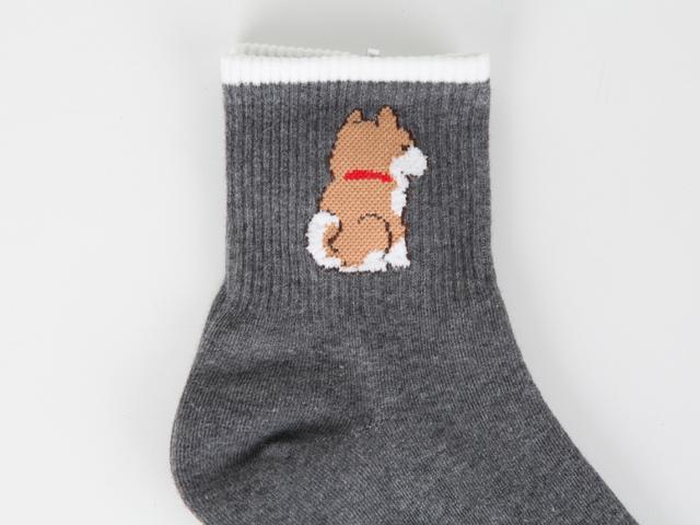 Joyful feast socks