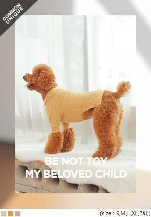 BE NOT TOY GOLGI COLLAR DOG T