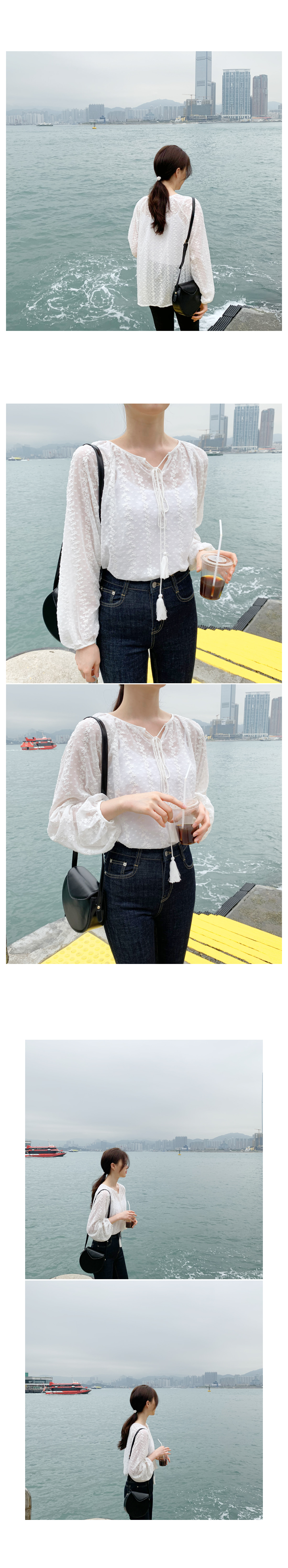 Periscope Embroidery Blouse