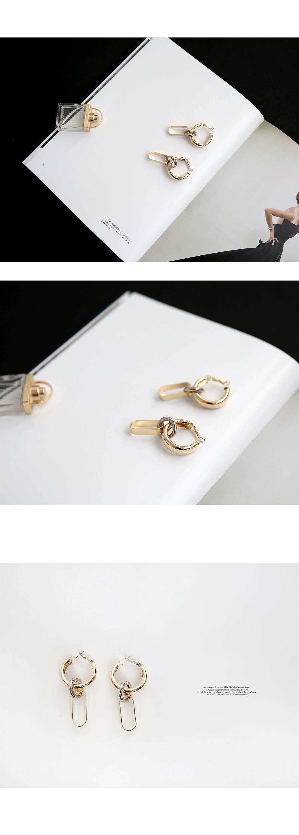 Circle Train Earrings Titanium Needle