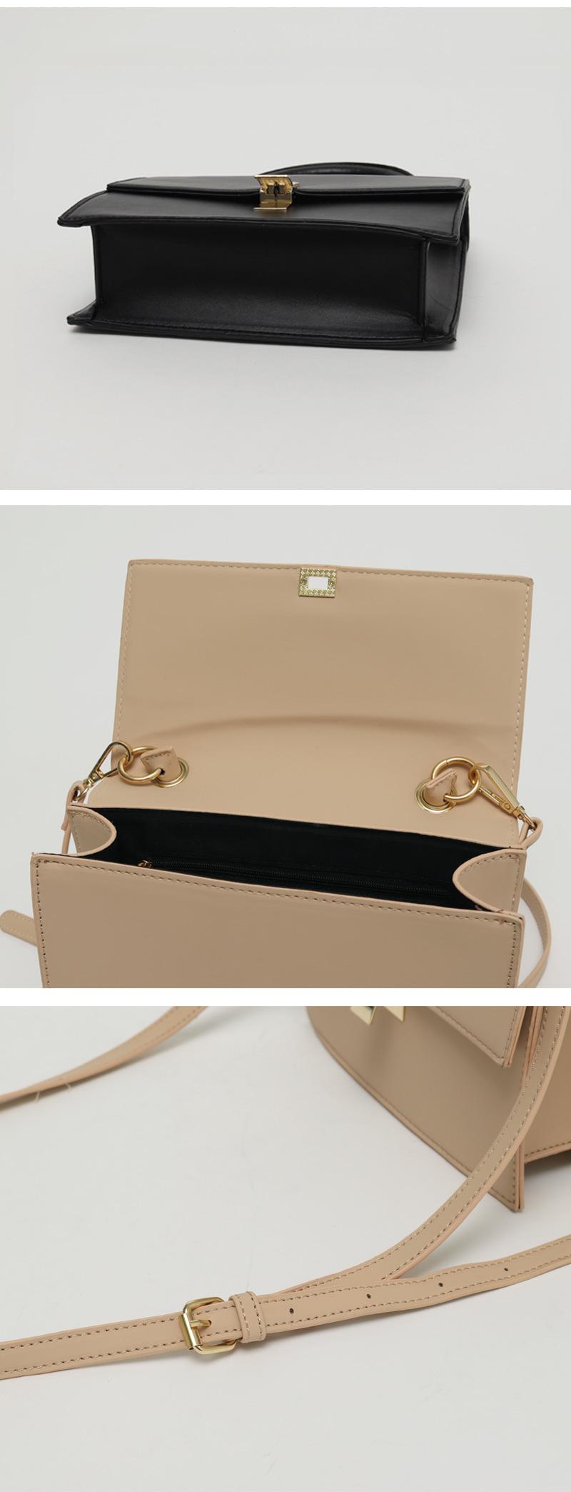 Blank gold buckle bag_C