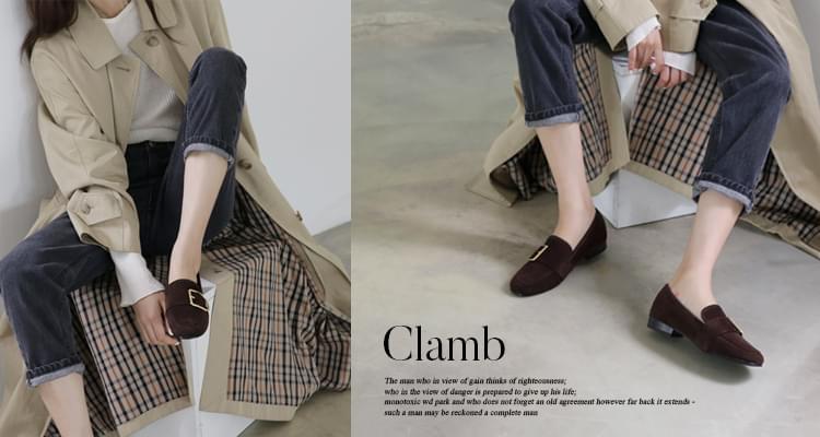 Clam 2.5cm