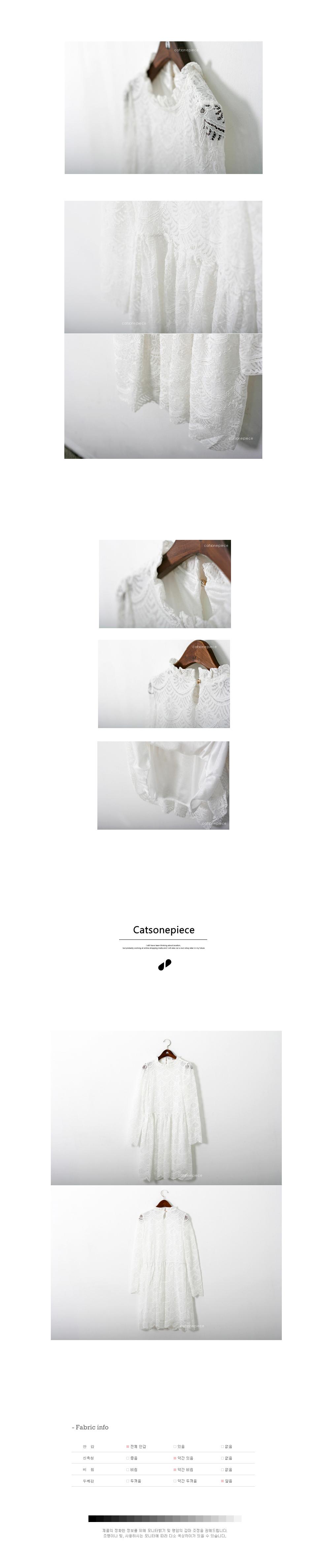 See-through ruffle lace dress