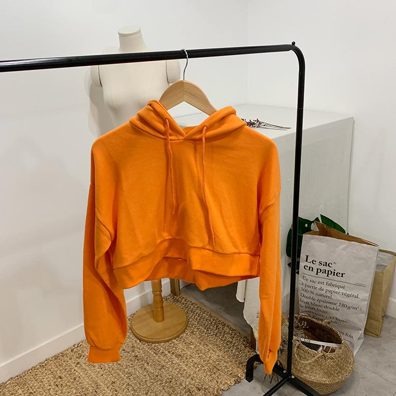 Vivid Mini Crop Hooded Sweatshirt