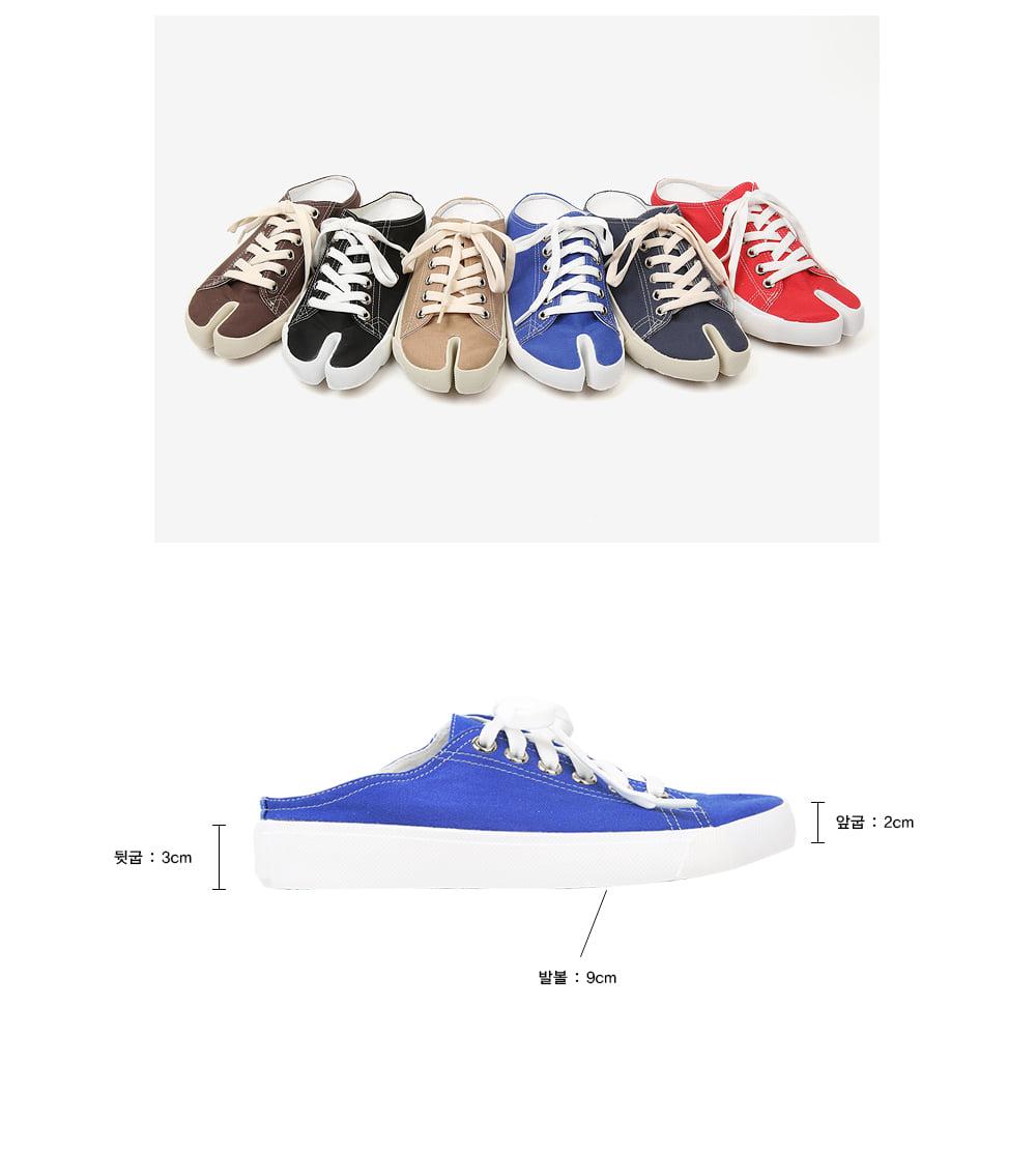 basic color tavi sneakers