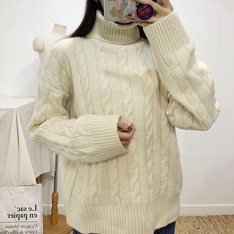 Holeless Pretzel Turtleneck Polar Knit