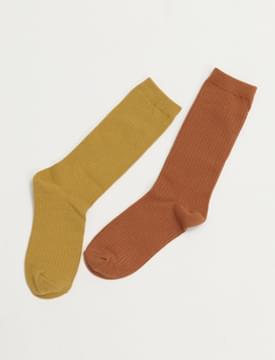 Golgi color long socks_J