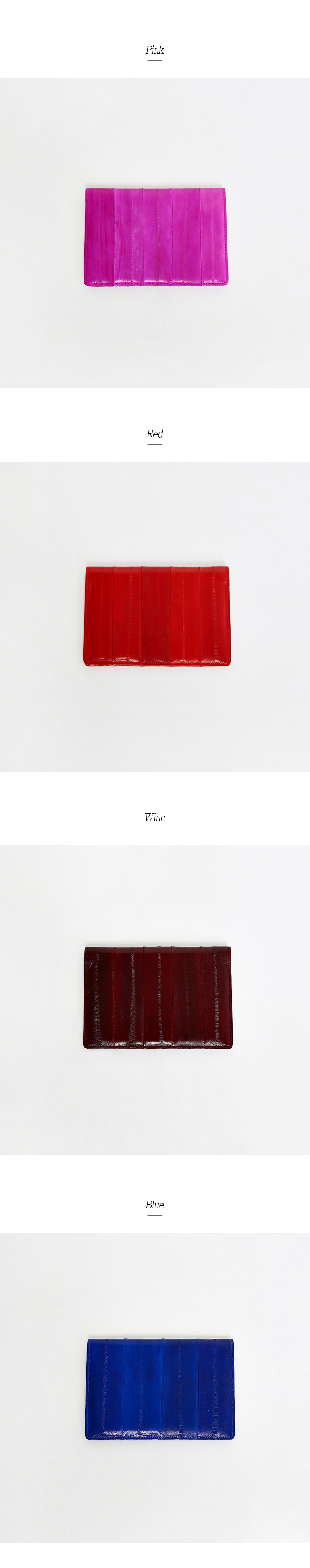 Basic Passport Wallet