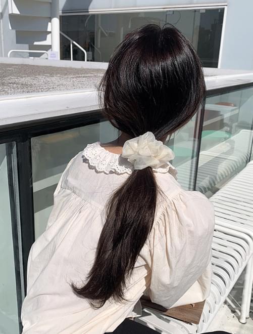 Swan hair gouache