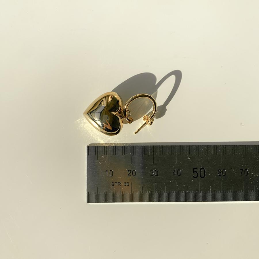 Heart winder silver925 ring earrings