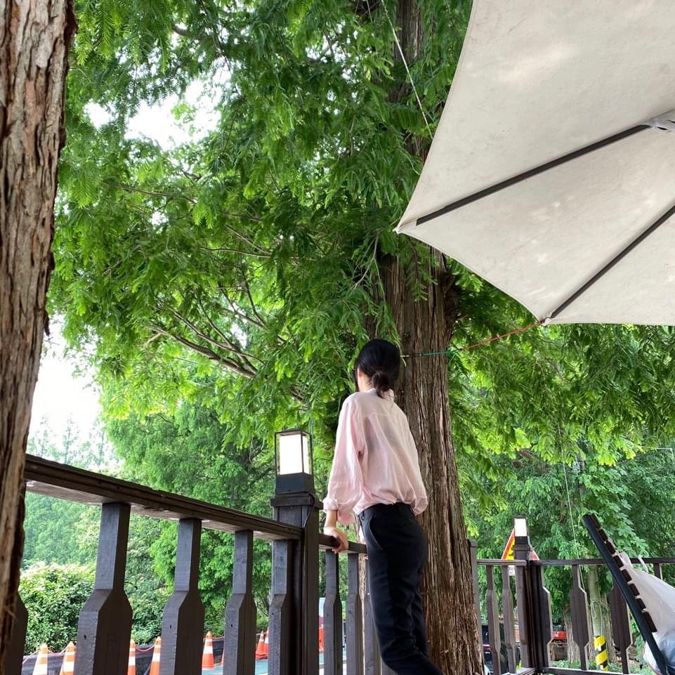 Lilac see-through shirt