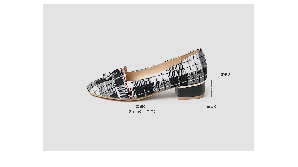 Le Kant Check Loafers 3cm