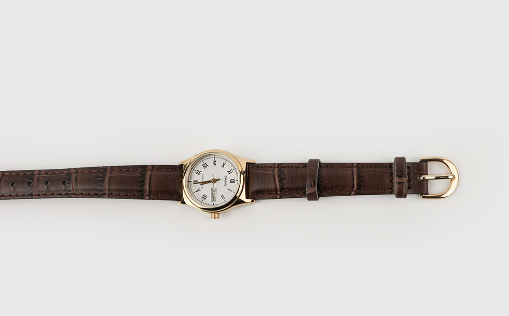 Modern brown leather watch
