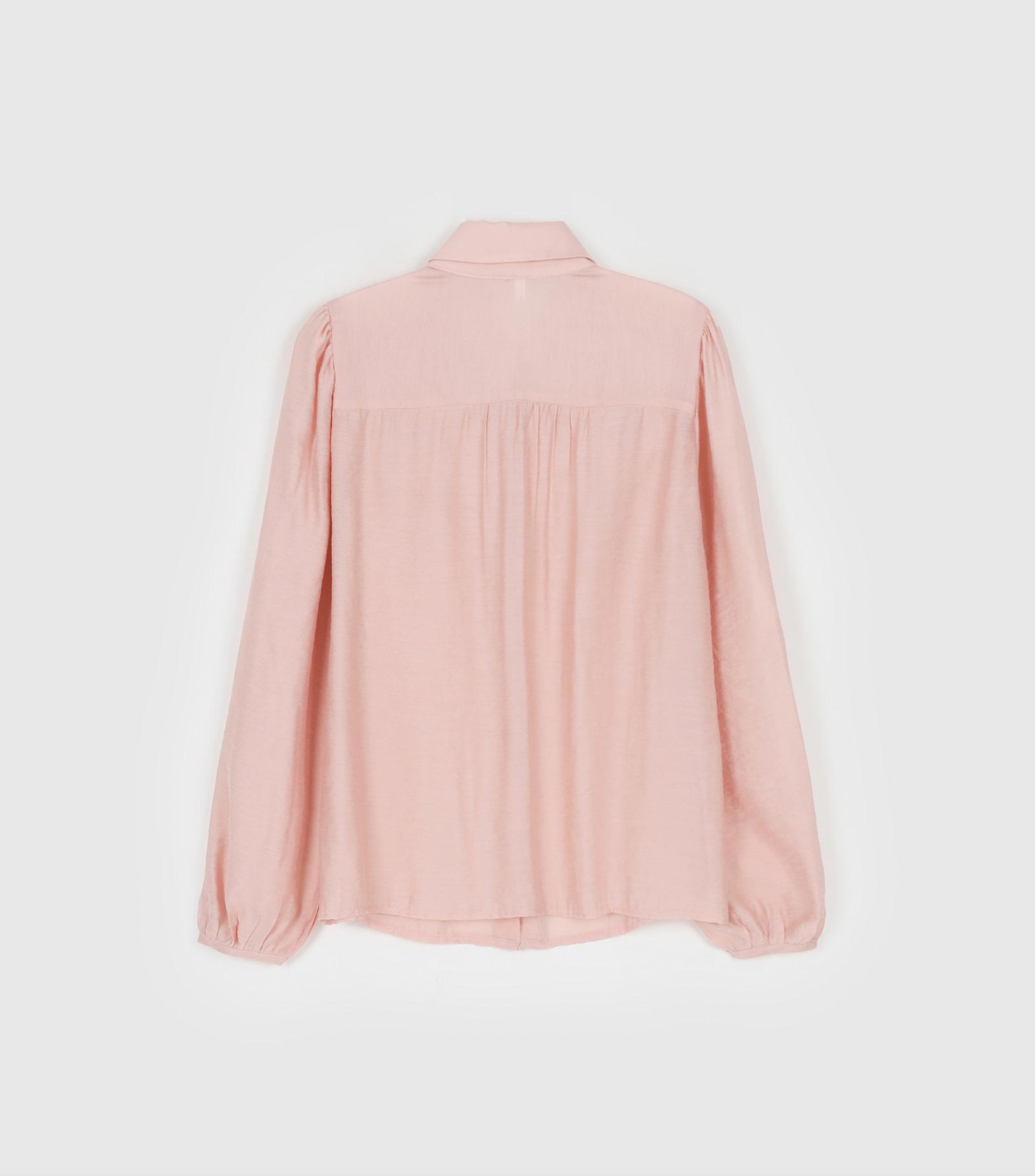 Leyla collar see-through blouse