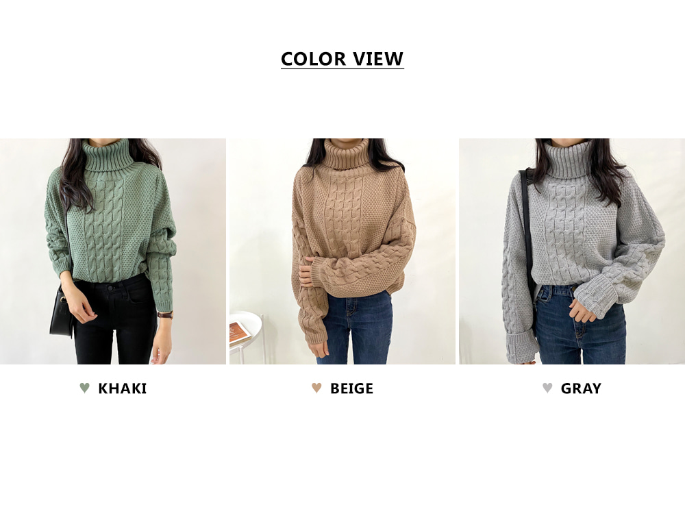 Color Twisted the Turtleneck Knitwear T # YW449