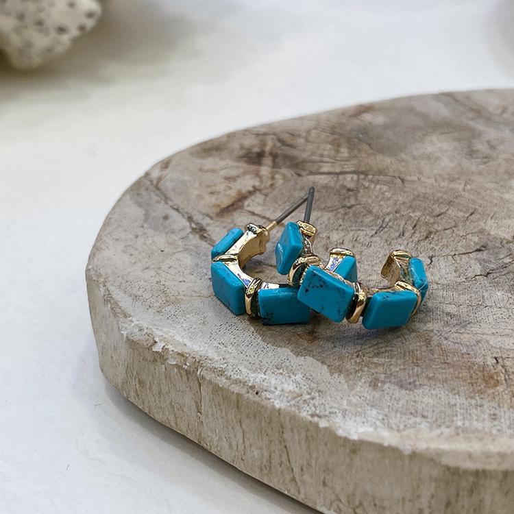 Noi Vivid Gemstone Nickel Needle Earrings