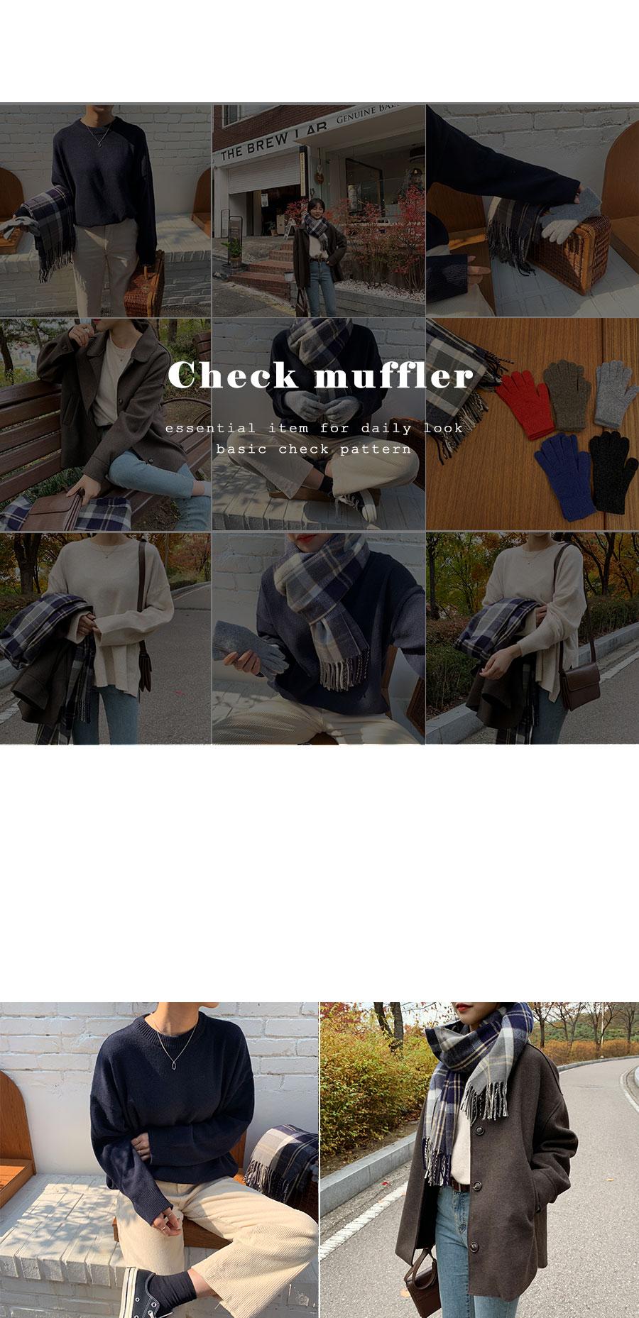 Check surgical muffler