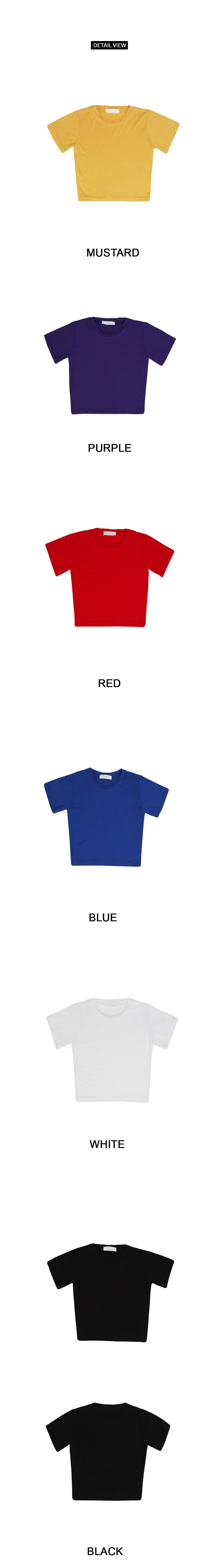 Indoor Basic Crop Short Sleeve Polo Shirt