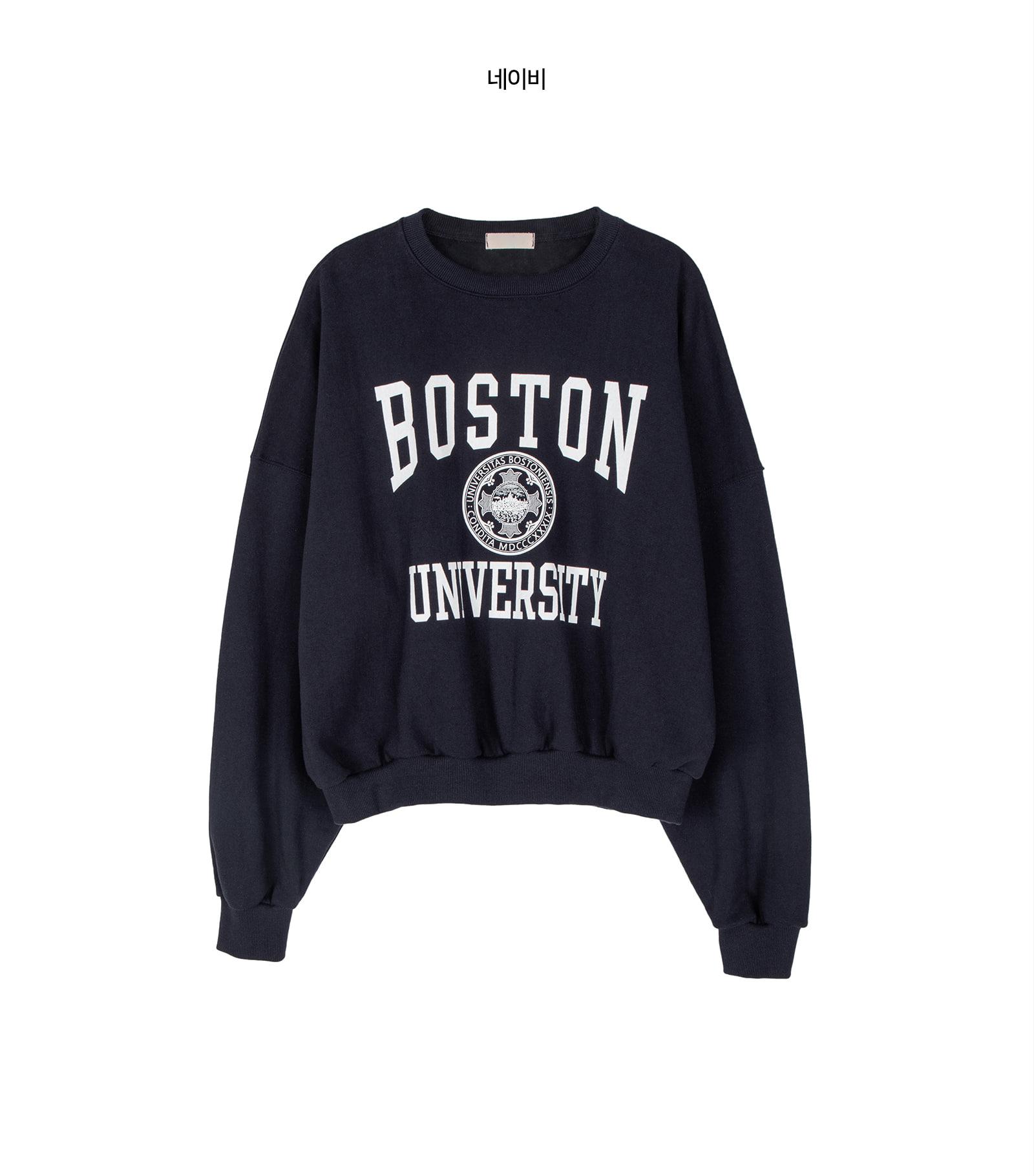 Boston printed crew neck sweatshirt