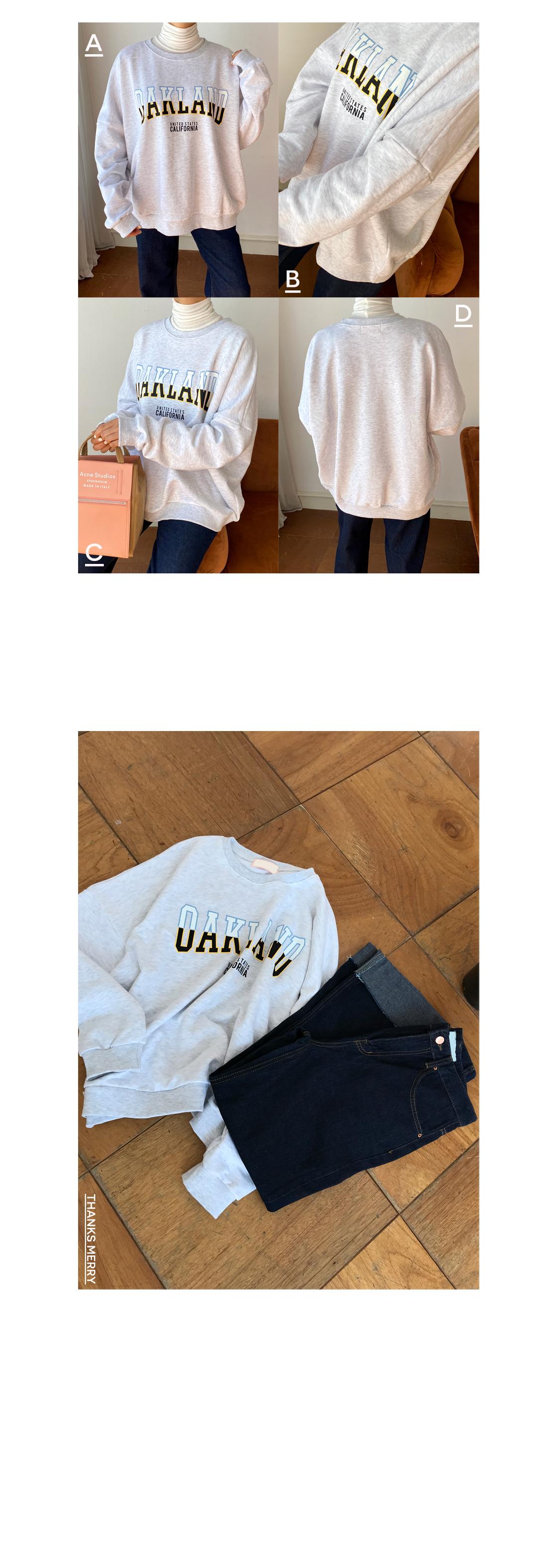 Auckland Overfit Sweatshirt