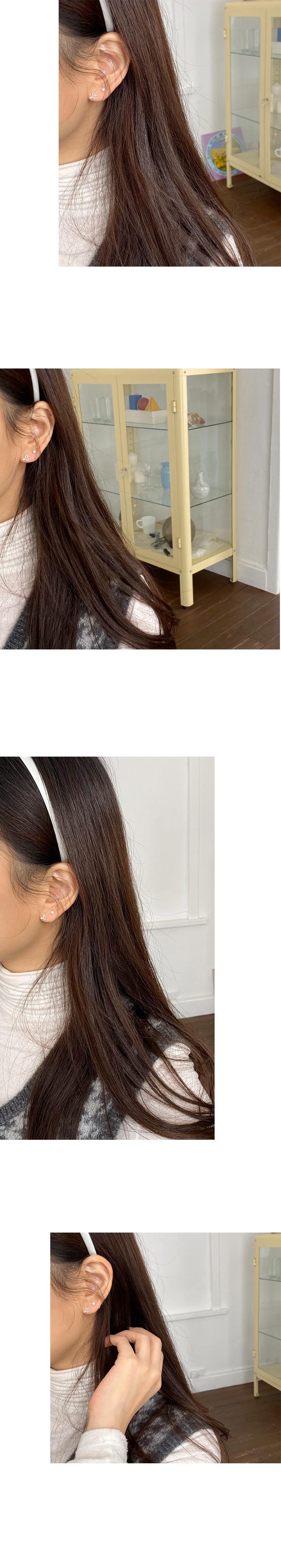 fly earring set