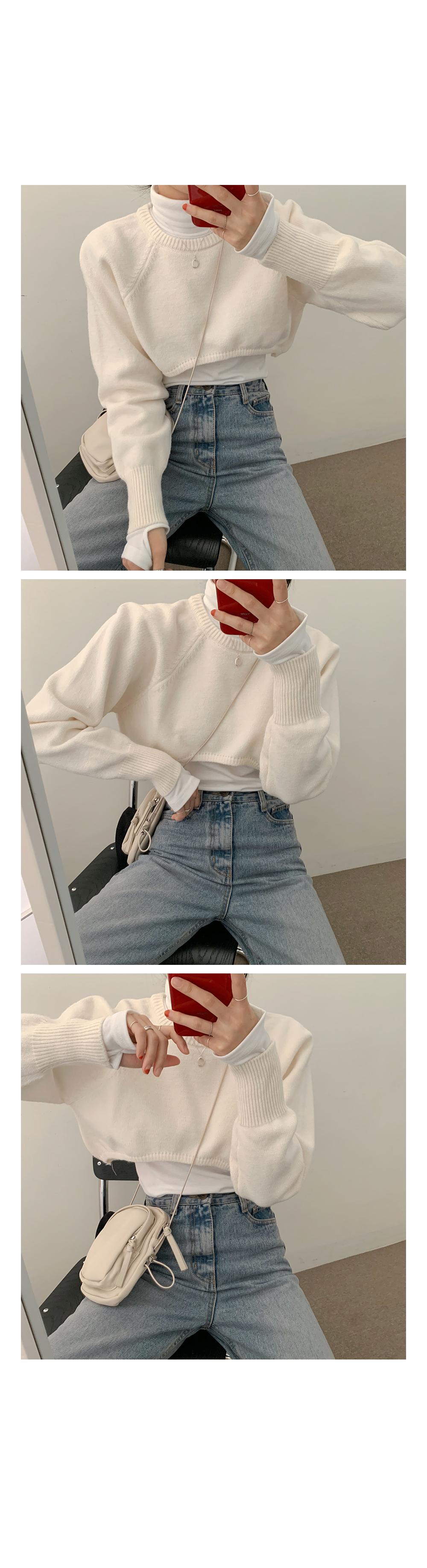 Rose Crop Top Knit