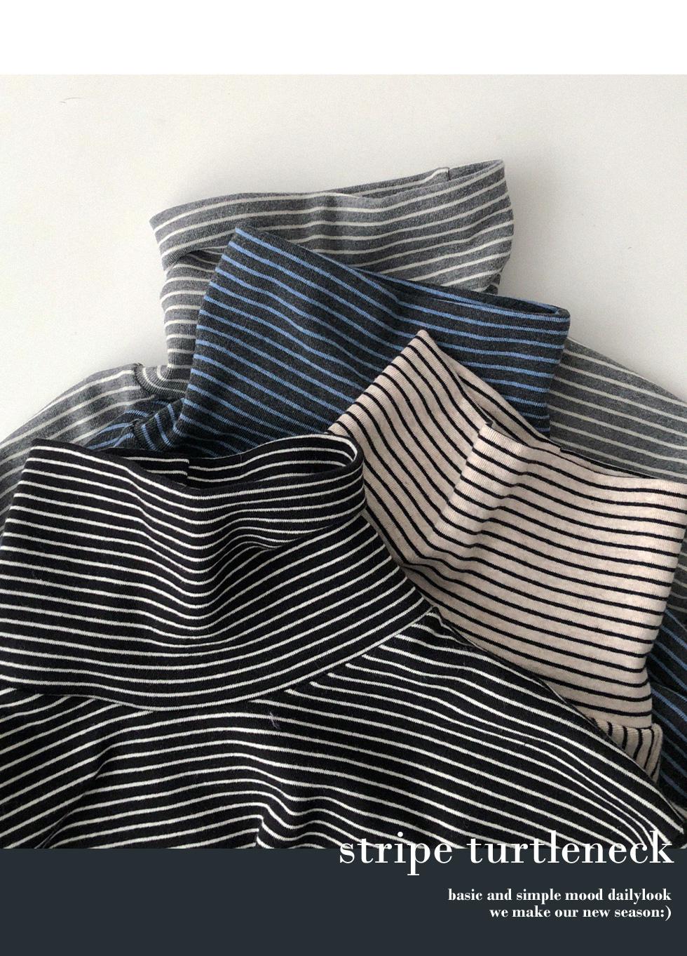 Cheljan Striped pitch Turtleneck T-shirt