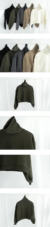 Basic Turtleneck Crop Sweatshirt