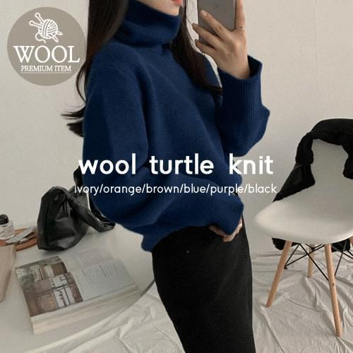 Tani Wool Turtle Knit