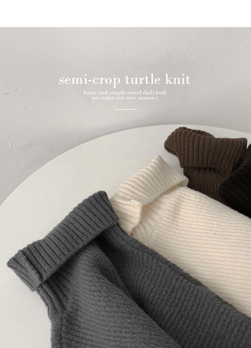 Snon Turtle Semi-Crop Knit