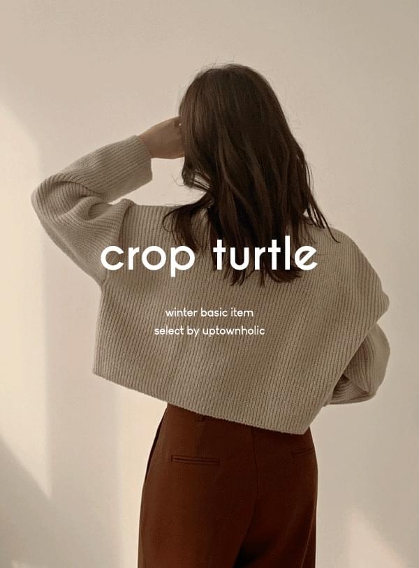 Turbine crop turtle knit