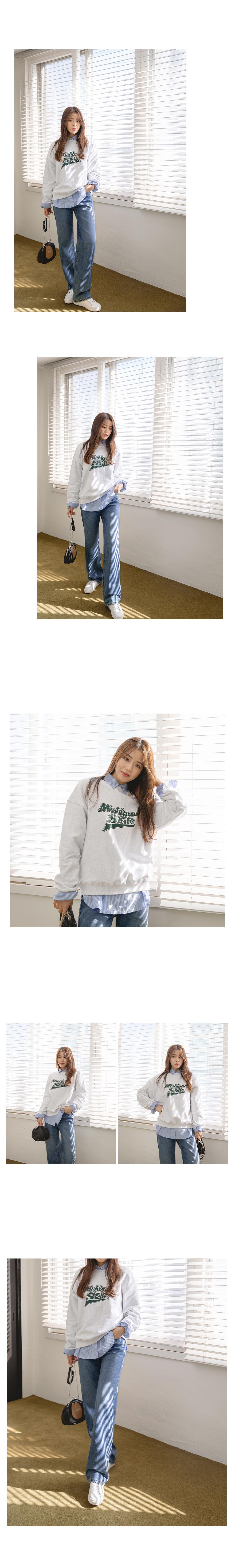 Michigan cotton Sweatshirt