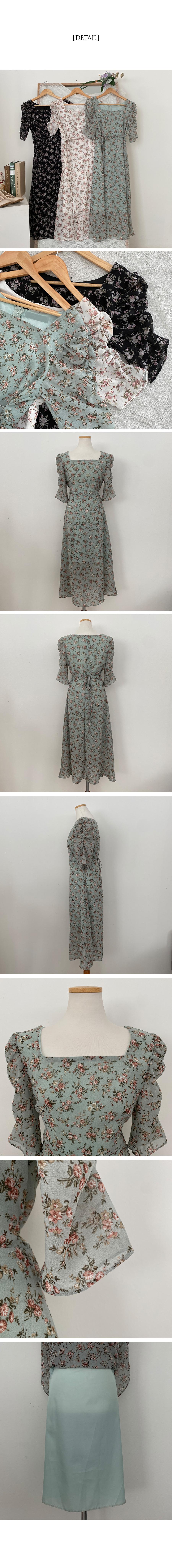 Gypsophila embroidered shirring square neck long Dress